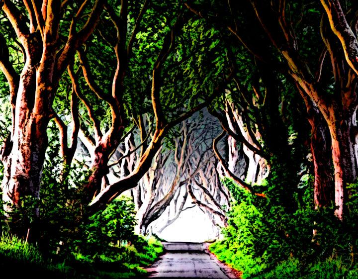 Chemin dans la forêt sombre
