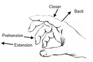 Moves of fingers