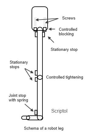 Squeleton of the leg of a  robot