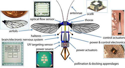 The architecture of the robot bee