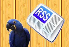 RSS ARA Editor