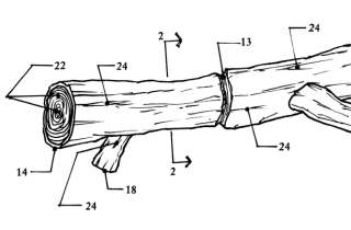 5 Ridiculous Inventions That You Won't Believe Exist  Ridiculous Patents