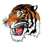 Tiger in SVG